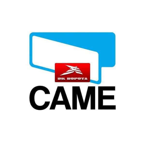 CAME 119RID421 электродвигатель OPP001